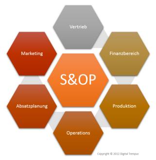 S&OP schema